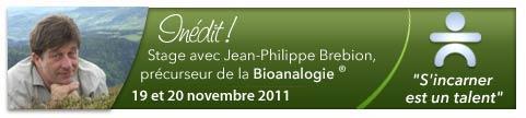 stage de bioanalogie avec Jean-Philippe Brebion